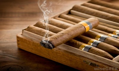 Drop that Cigar  It is as harmful as smoking a cigarette